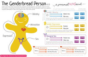 The Genderbread Person, a guide to self-identity