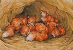 little foxes in their burrow