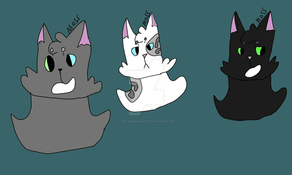 Dovewing, Ivypool, and Hollyleaf! by TeamRedScarf