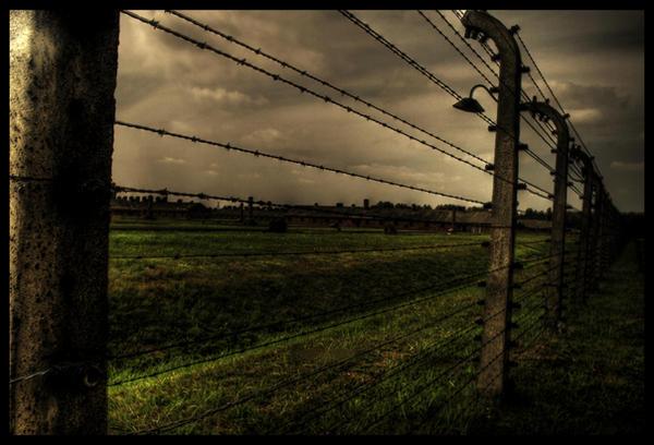 Holocausto judio: testimonio de un nazi y un sonderkommando