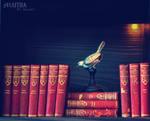 books IV