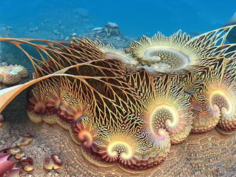 Delicate Coral by ellarien