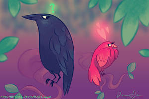 Birds for Steph