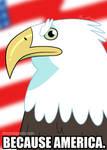 Because America