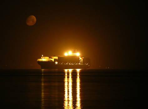 moonlight cargo