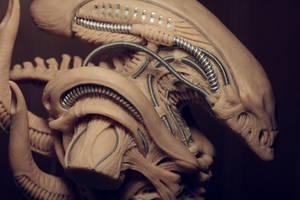 Alien concept detail