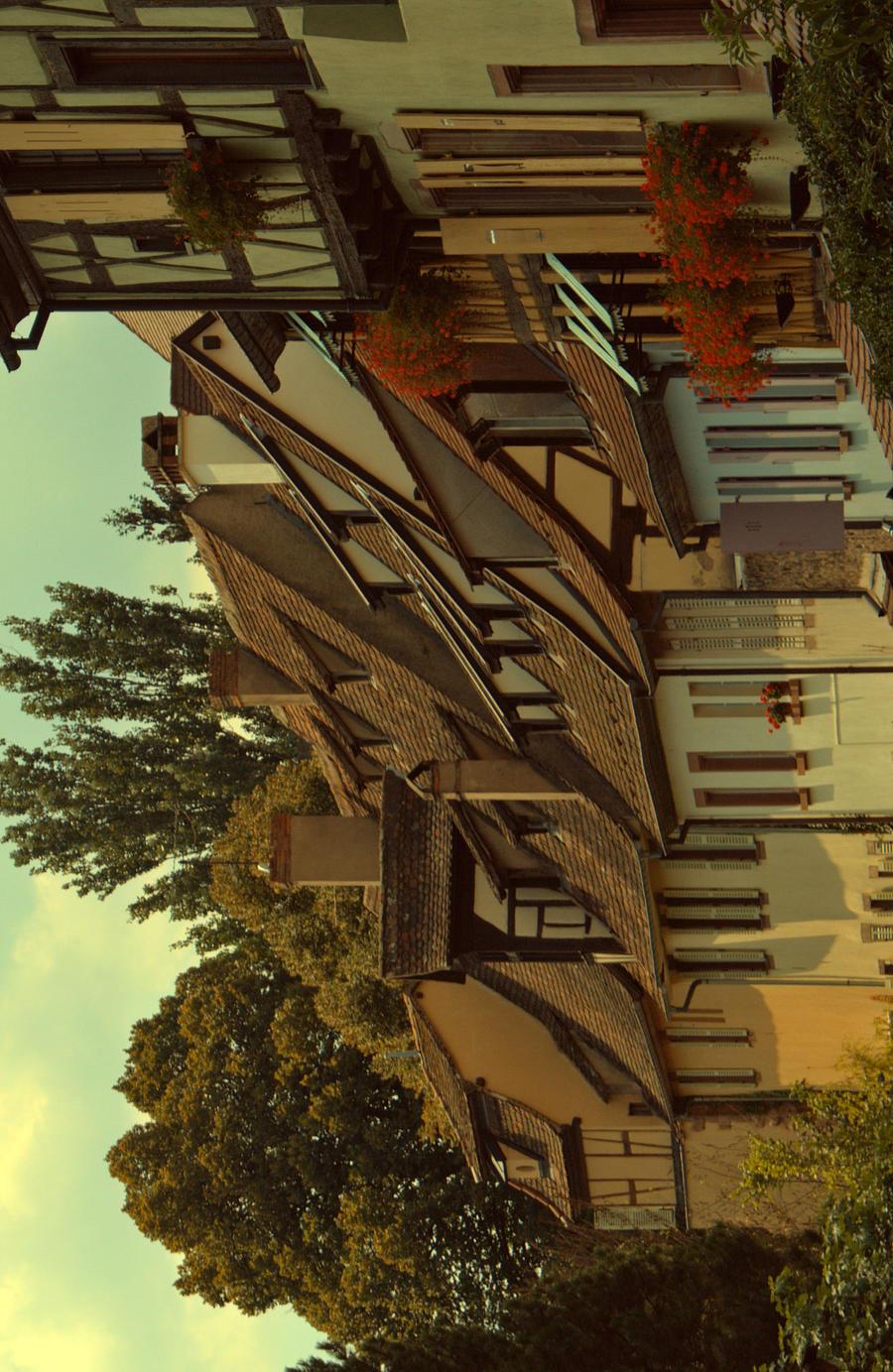 La Petite Venise COLMAR by LiveInPix