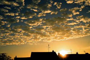 Rising sun by LiveInPix