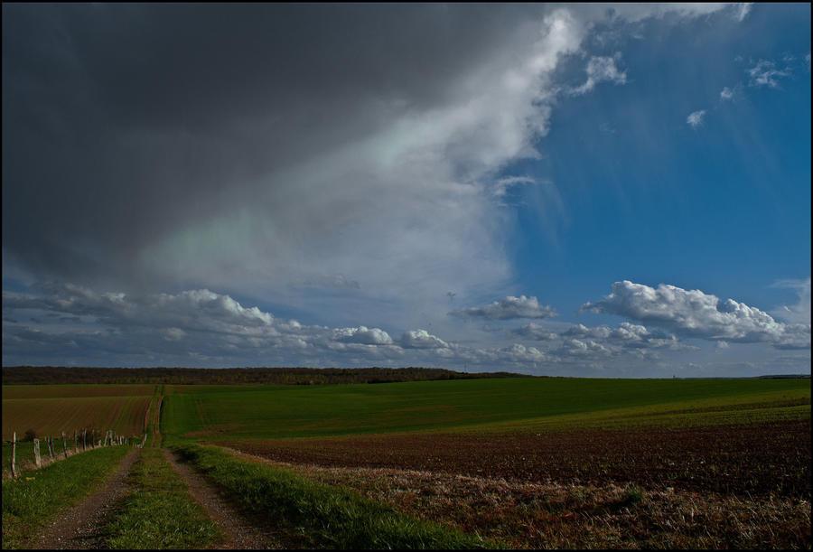 Through the fields by LiveInPix