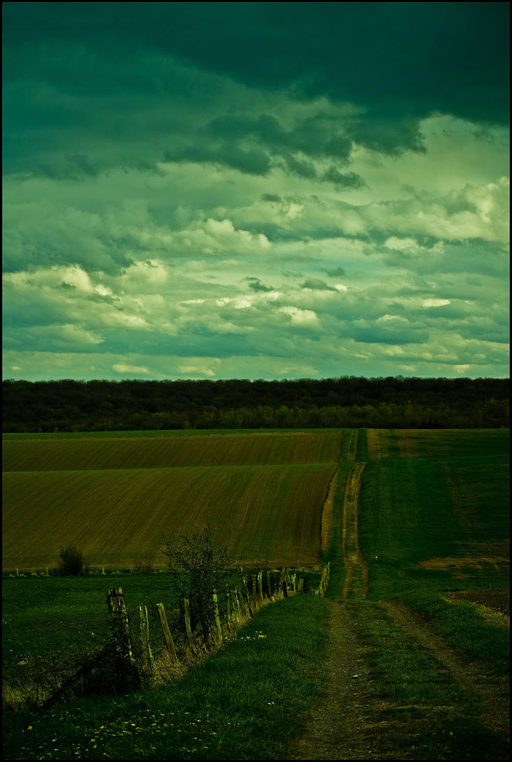 Mise au green by LiveInPix