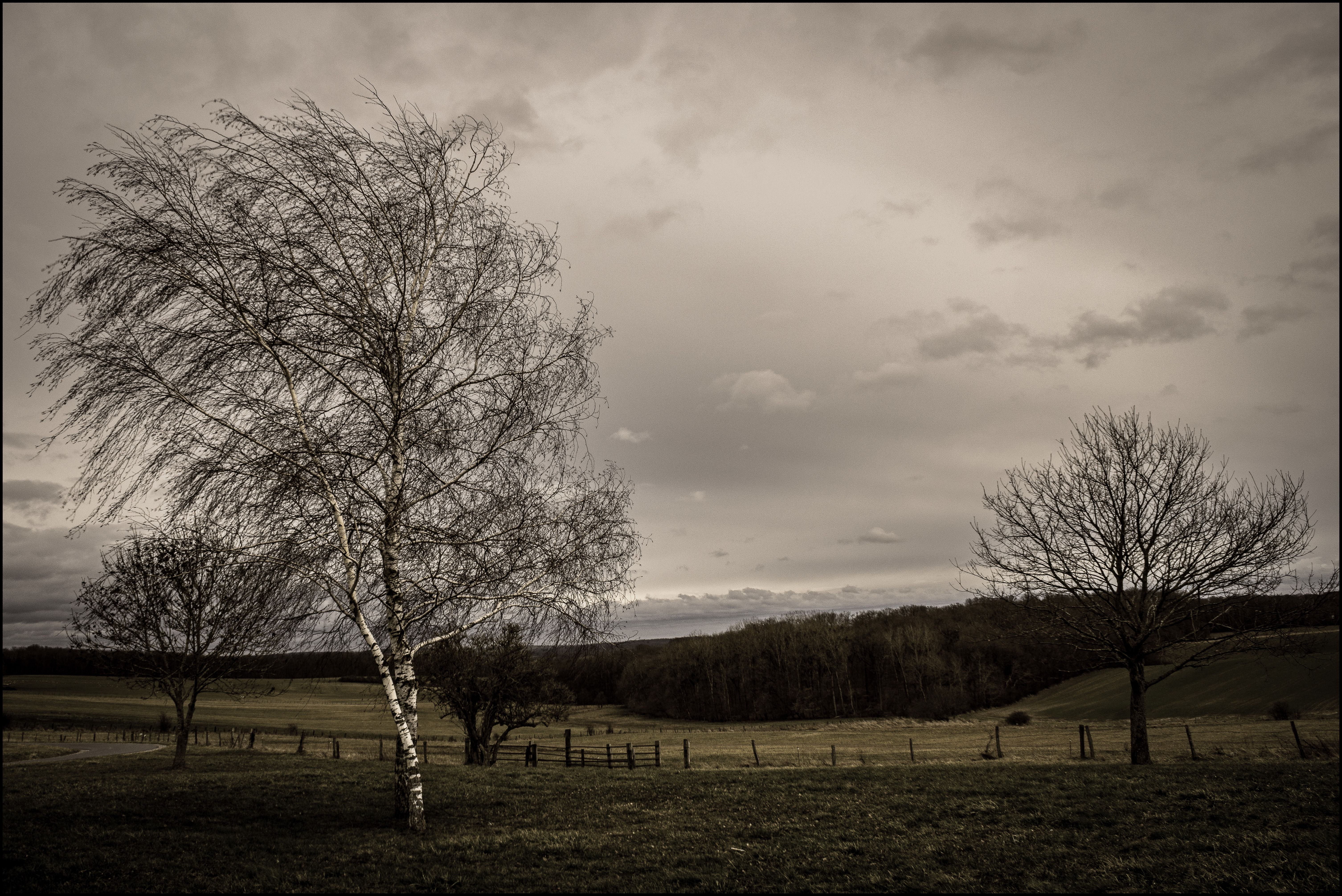 Out in the cold by LiveInPix