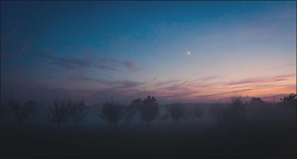 Foggy night by LiveInPix