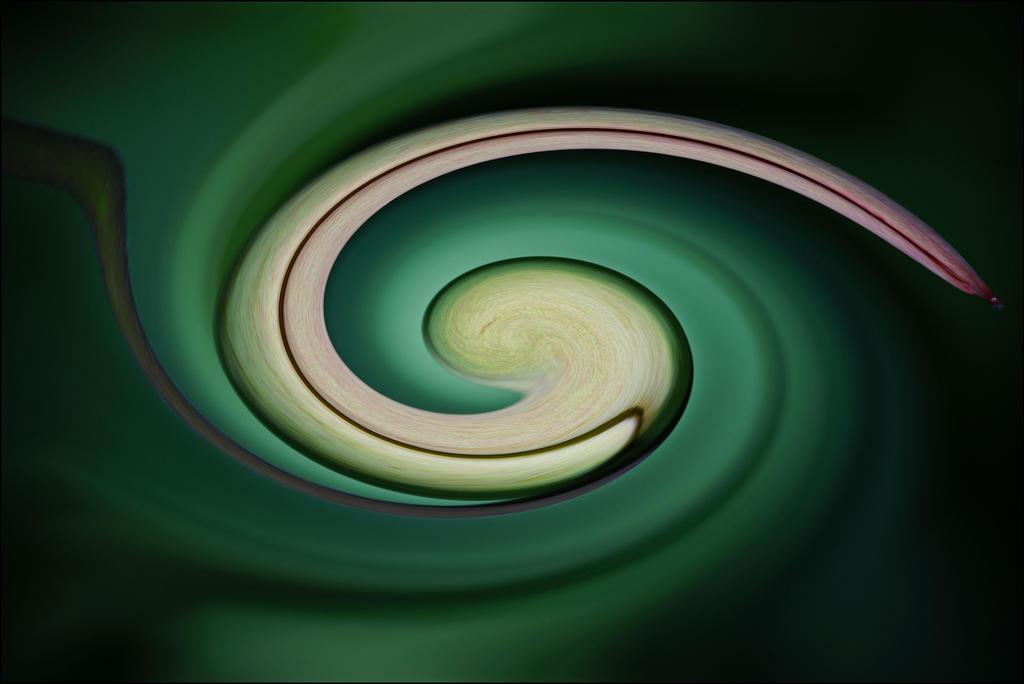 Spiral by LiveInPix