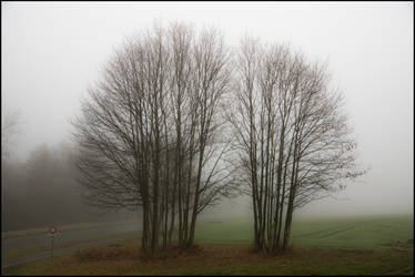 Naked twins by LiveInPix