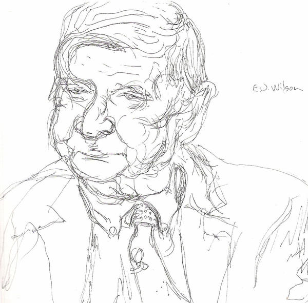 E.O. Wilson by norrell