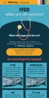 IVDD Primer - Treatment by tinkerbelcky