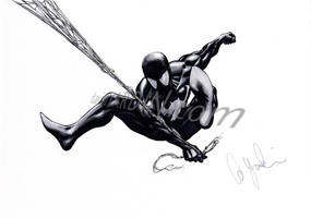Black Spidey by davidyardin