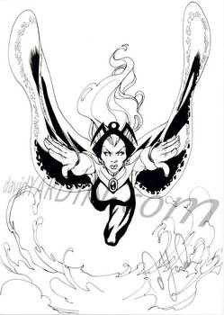Another Storm Sketch