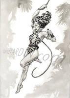 Shanna Commission by davidyardin