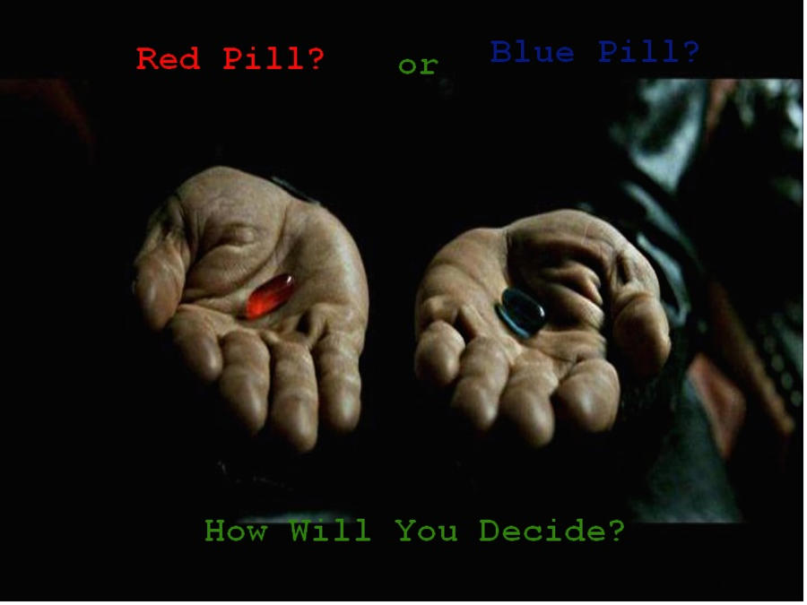 Red Pill Logic: An Essay on Female Understanding