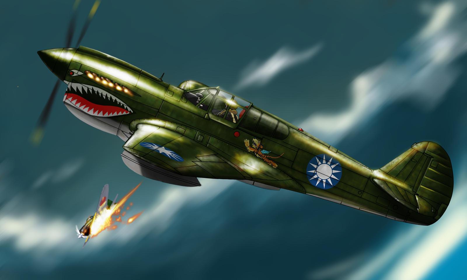 P-40 WARHAWK by roback