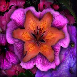 Garden Flowers Collage by ToysoldierThor