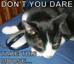 Mouse Guardian