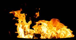 Fire 004