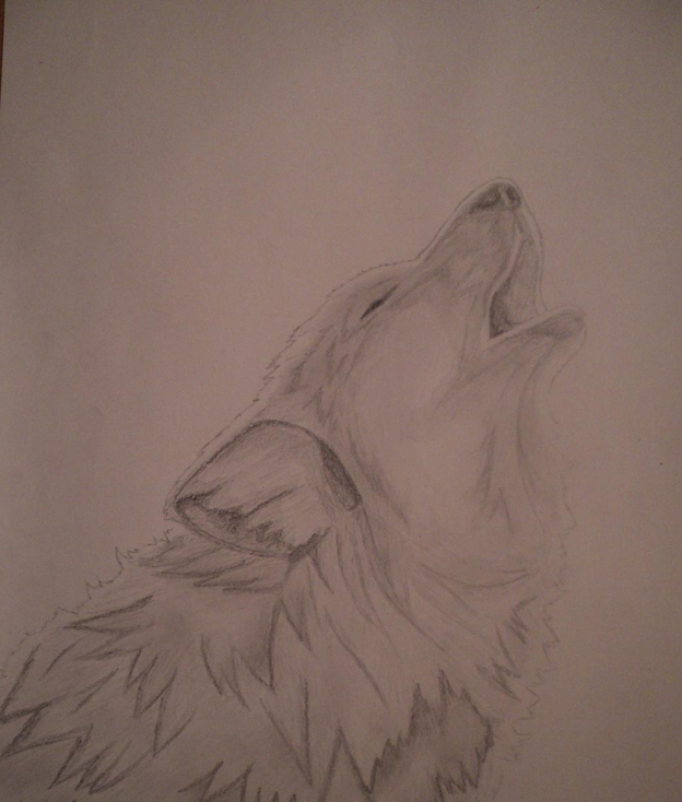 Imagen de lobos a lapiz - Imagui