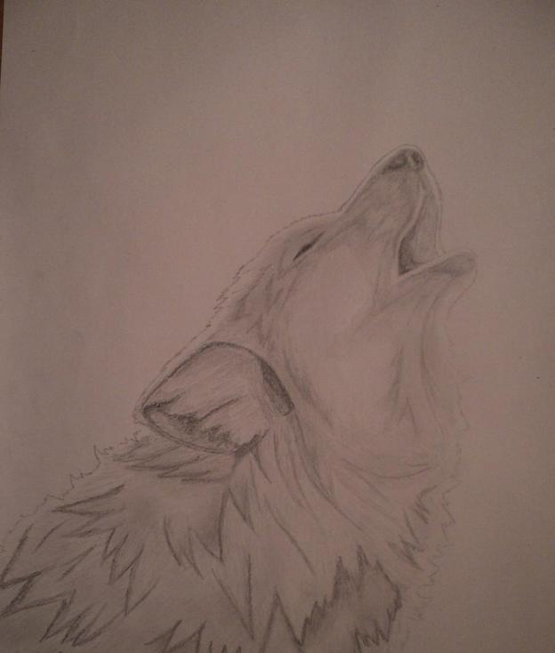 Dibujo a lpiz  Lobo aullando a la Luna  Taringa