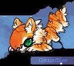 Cottontiger