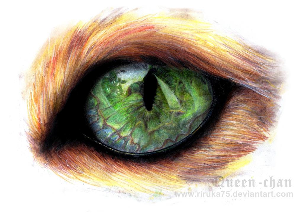 Cat Eye by paintedcastle