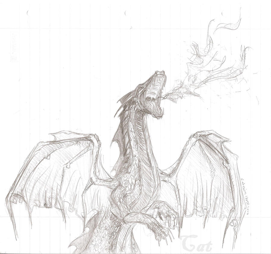 Drawings Of Dragons Blowing Fire Fire breathing dragon by Drawings Of Dragons Blowing Fire For Kids