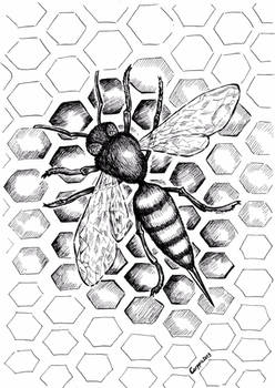 Inktober #10: Nature's Perfect Pattern
