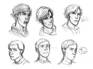 Sh Expressions