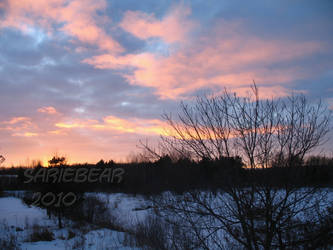 2010 Sunset4 by Sariebear20