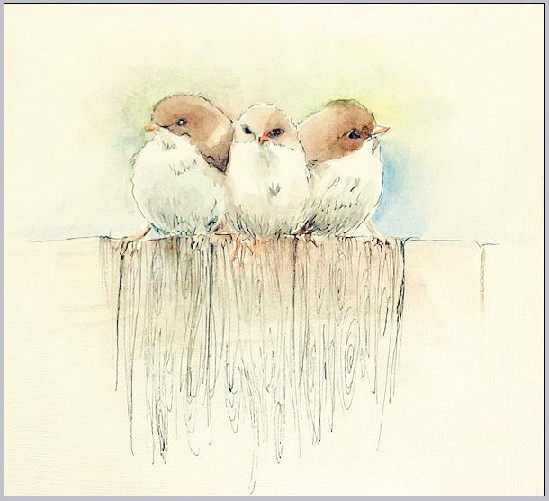 Sparrows by Emmatyan