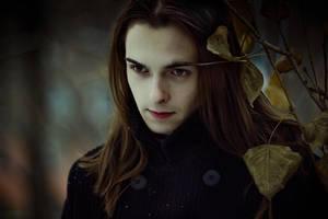 fall by Emmatyan