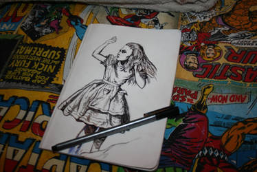 Alice's Adventures Illustration by Unorijenal