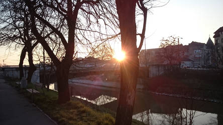 Golden hour morning 02