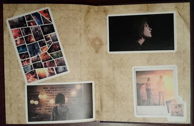 Life Is Strange Artbook /back