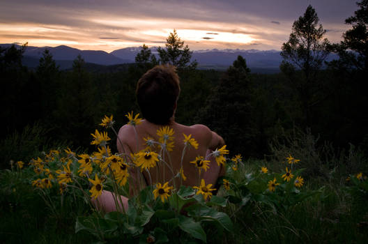 Nude with flowers, a skyclad view