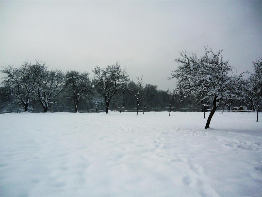Winter scene II by Khanzen