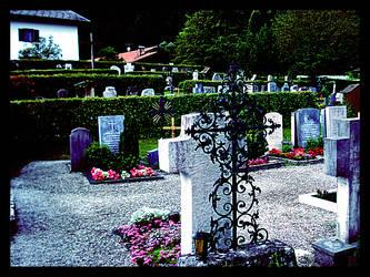 Gravestone Hedges