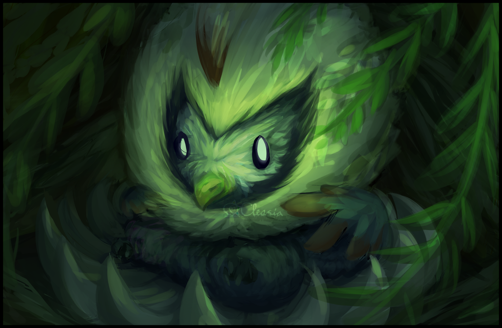 Pokemon: Rufflet by Cleasia