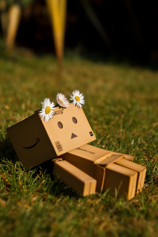 Sleeping in the Sun - Danbo by Siilver1984