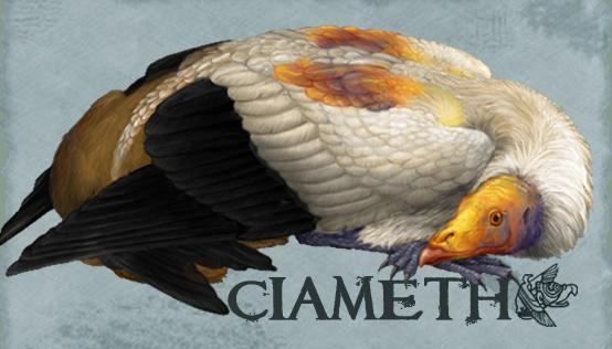 Ciameth's Profile Picture