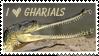 I Love Gharials by Ciameth