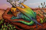 Smardin - Desert Rainbow