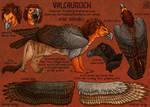 Valcauroch 2015 Ref Sheet by Ciameth